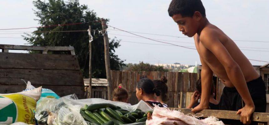 Em SP, lançamento do Plano Emergencial tem plantio de árvores e doação de alimentos