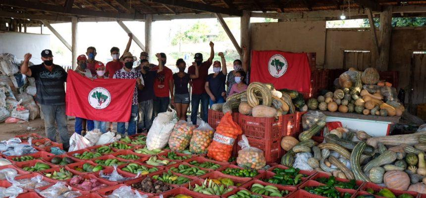 ARTIGO | Terra e trabalho, os nutrientes da solidariedade
