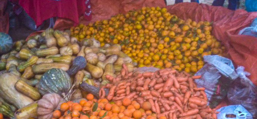 MST doa 2 toneladas de alimentos em Santa Catarina