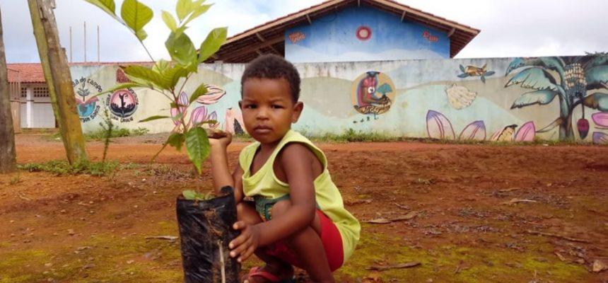 Solidariedade Sem Terra se espalhou por toda Bahia