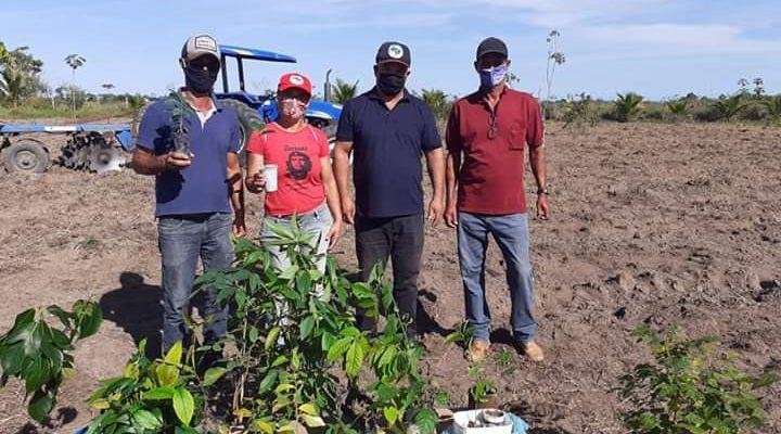 MST planta árvores e realiza ato de solidariedade no extremo sul da Bahia