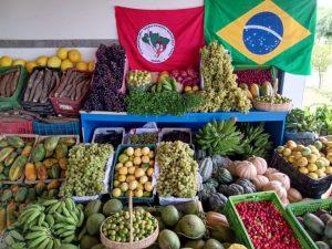 Movimentos populares se unem para garantir apoio à agricultura familiar