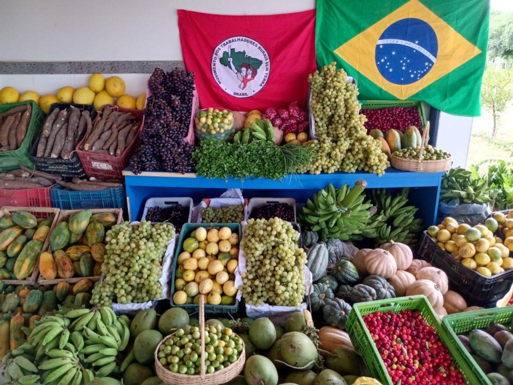 """""""Se esse veto do Bolsonaro se mantiver, o Brasil vai morrer de fome"""""""