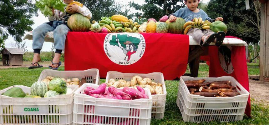 ARTIGO | O MST e a solidariedade que chega em forma de alimento