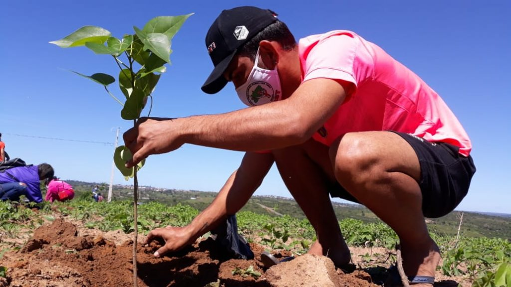 Juventude Sem Terra marca Semana da Agricultura com plantio de árvores