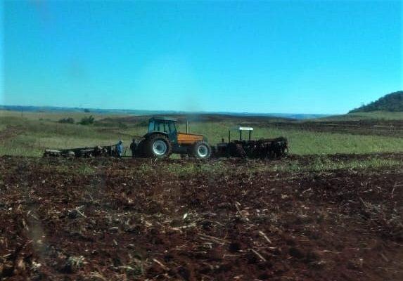 Comunidade do MST tem lavouras destruídas por fazendeiro e capangas no Paraná
