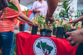 Comissão de Direitos Humanos e Minorias manifesta apoio ao Quilombo Campo Grande