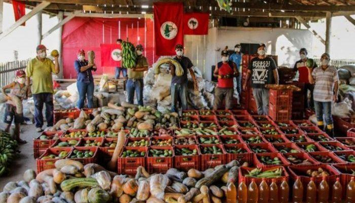 Artigo  | Solidariedade e Soberania Alimentar na Pandemia