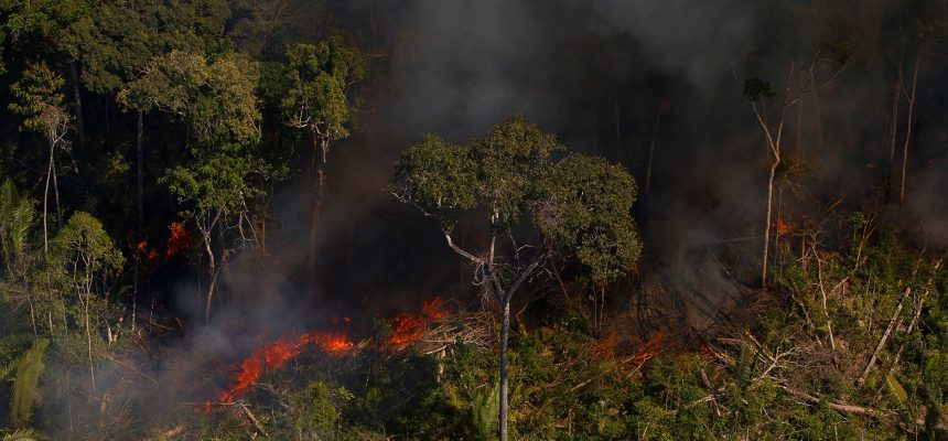 The Brazilian government is complicit in recent attacks on the Amazon
