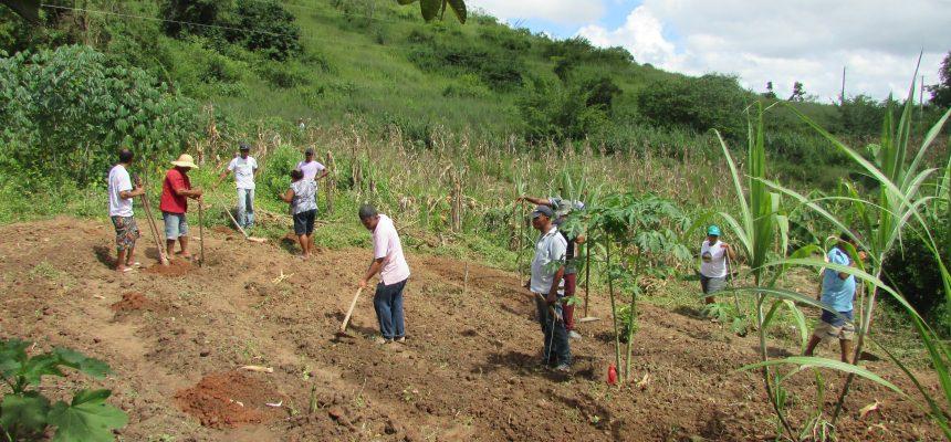 Assentamento Ulisses Oliveira: luta e amor à vida