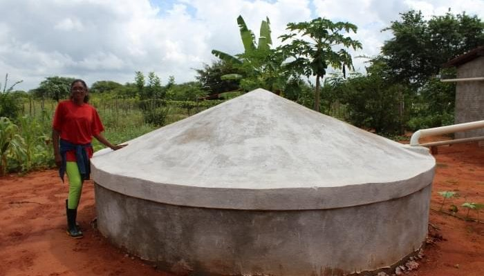 """""""Sou agricultora, guardiã de sementes e cisterneira também"""", relata Ana Maria"""