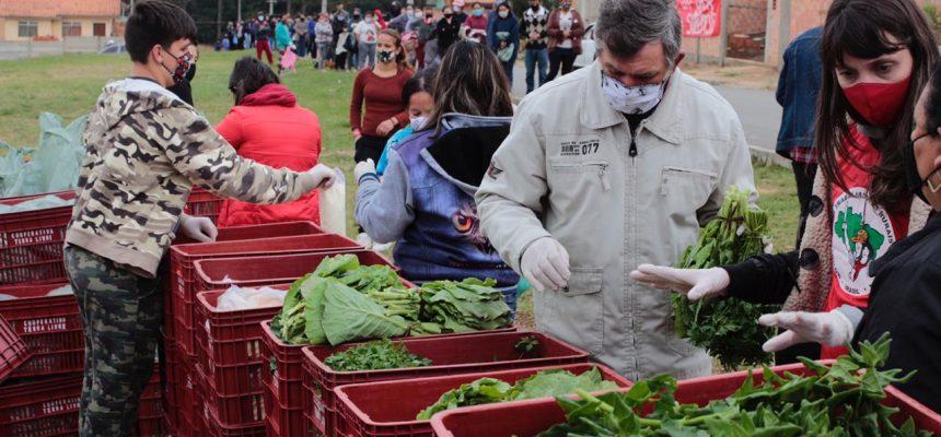 Assentamento Contestado, na Lapa (PR), partilha quatro toneladas de alimentos