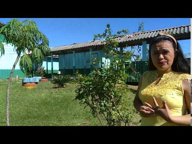 Embelezamento das Escolas | Plantar Árvores, Produzir Alimentos Saudáveis