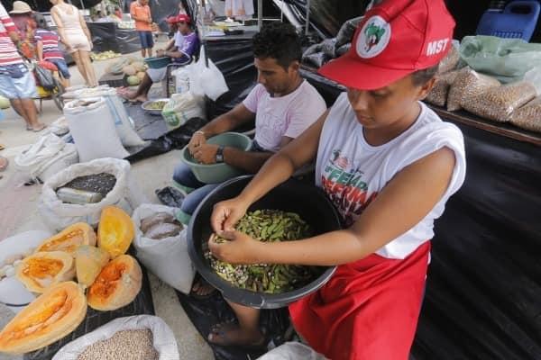MST organiza programação online para Feira da Reforma Agrária em Alagoas