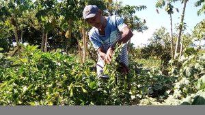 Assentadas há 17 anos, famílias são ameaçadas de despejo ilegal no Piauí