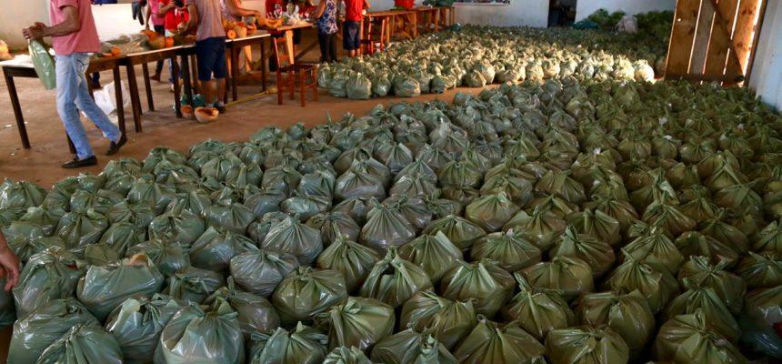 No PR, famílias do MST atingem 430 toneladas de alimentos doados durante a pandemia