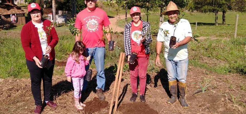 MST de Santa Catarina plantou 1600 mudas de árvores nativas