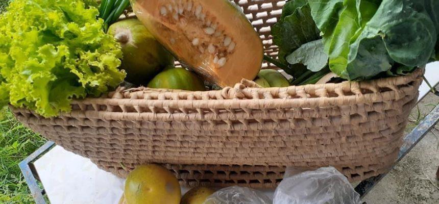 Com a pandemia, MST no Nordeste adota comércio online de cestas agroecológicas