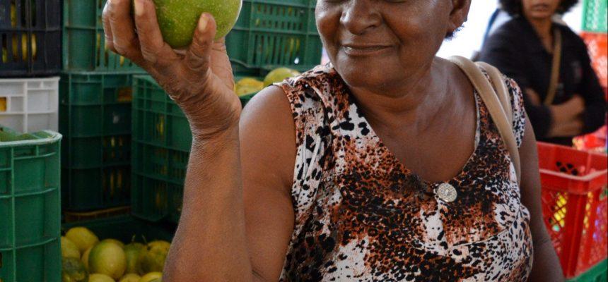 Prêmio vai selecionar as melhores histórias dos guardiões da agrobiodiversidade
