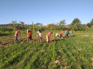 Tribunal Federal nega recurso e 63 famílias Sem Terra podem ser despejadas no RJ
