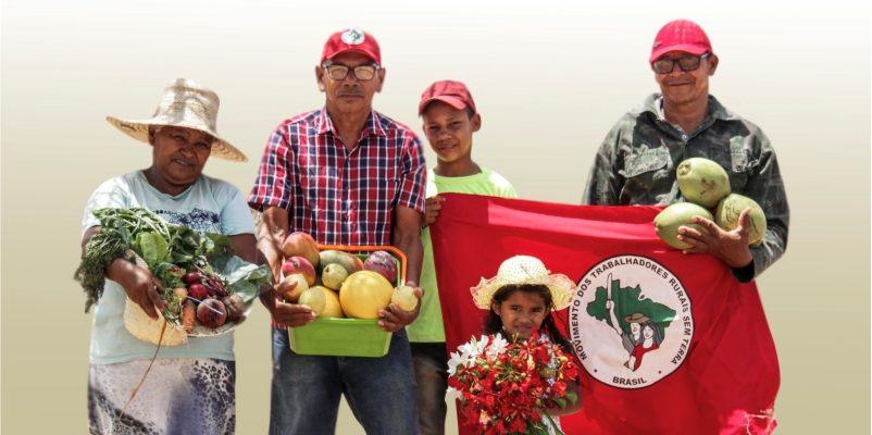 Plano Nacional de Plantio de Árvores: MST lança Caderno de subsídios