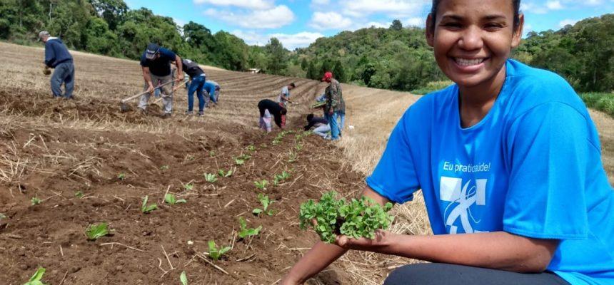 Com apoio do MST, comunidade urbana inicia horta agroecológica na grande Curitiba