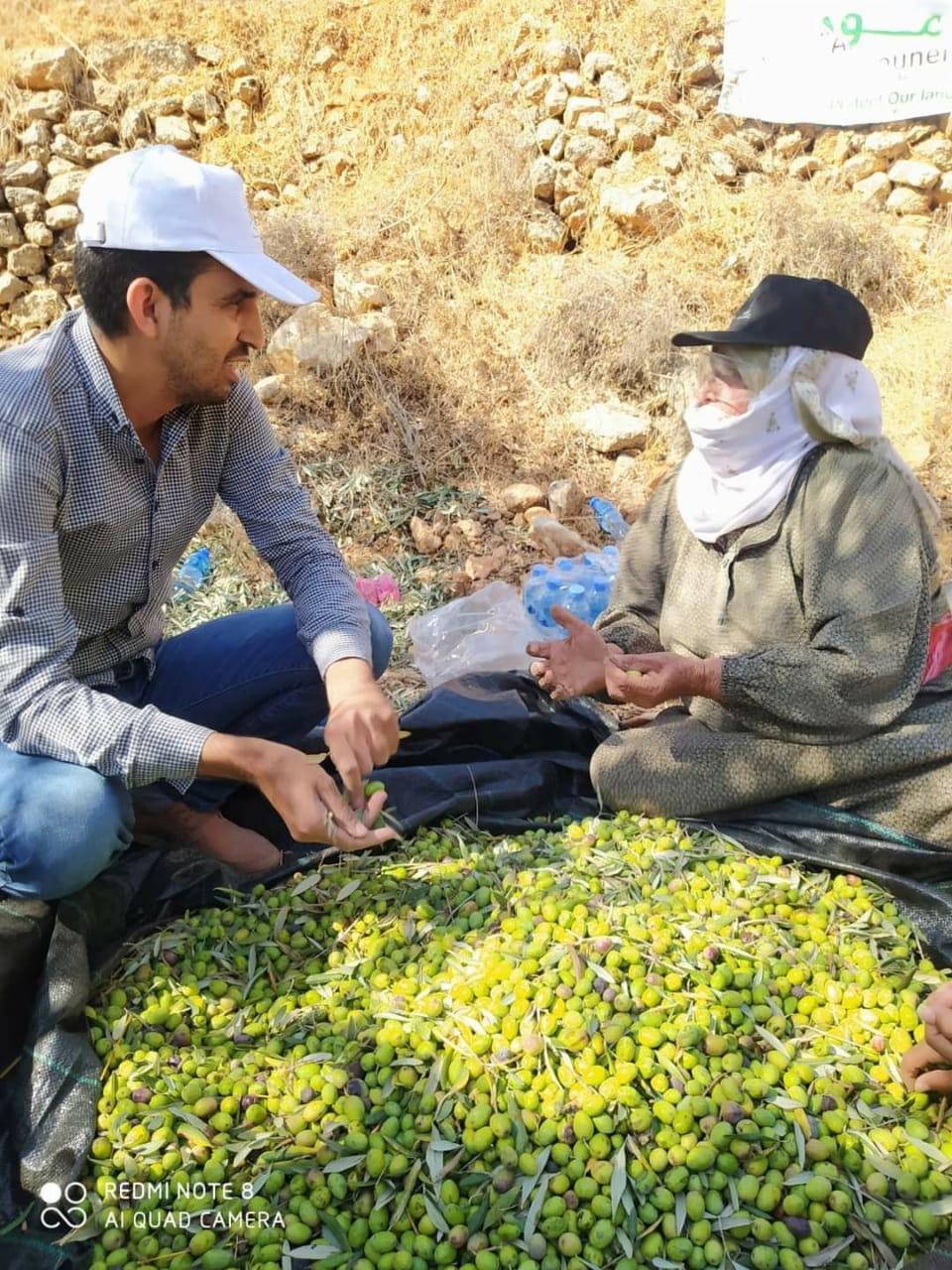 Em 2020, camponeses da Palestina foram ameaçados por 'acordo de paz' e fizeram ações de solidariedade