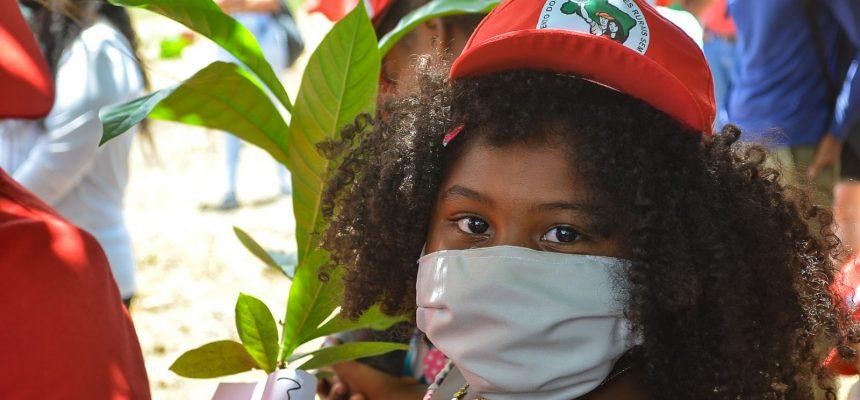 MST faz mutirão de plantio de 300 árvores nativas da Mata Atlântica em Pernambuco
