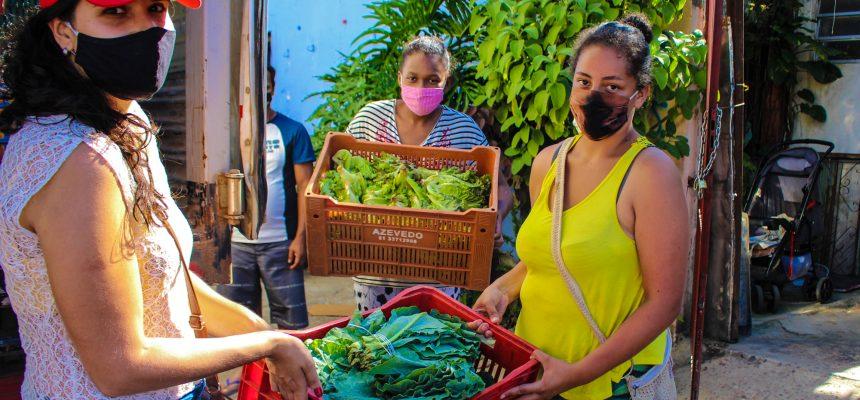 Natal Sem Fome: MST no RS doa 12 toneladas de alimentos em Porto Alegre
