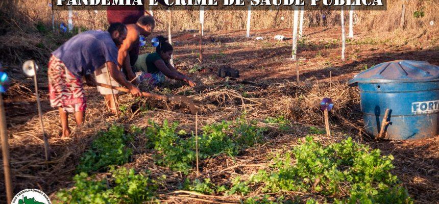 Jardinópolis pode ter assentamento agroecológico e agroflorestal