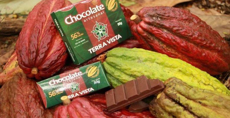 Chocolate com aroma da Mata Atlântica: florais, frutais e amadeirados