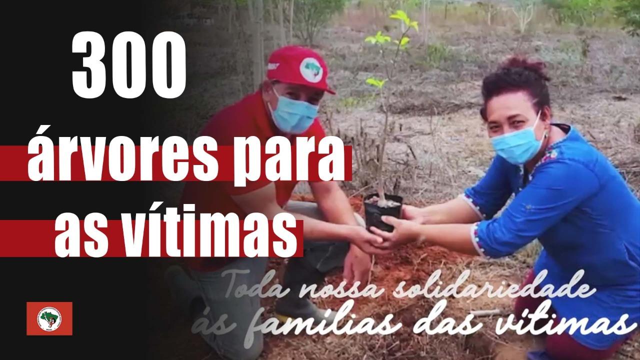 300 árvores para as vítimas!