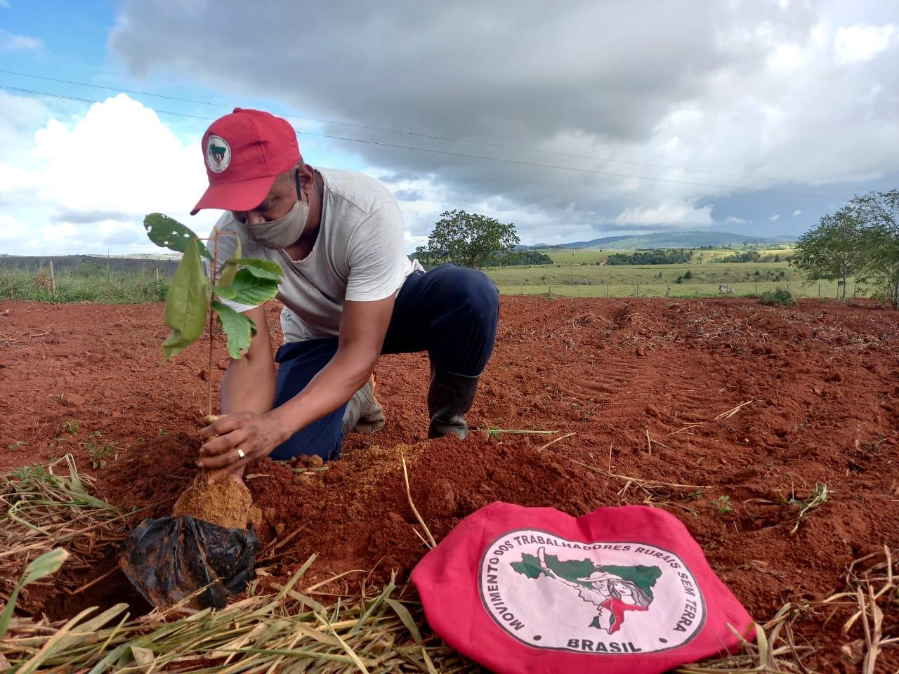 No Extremo Sul da Bahia, MST realiza ações durante a Jornada do Meio Ambiente