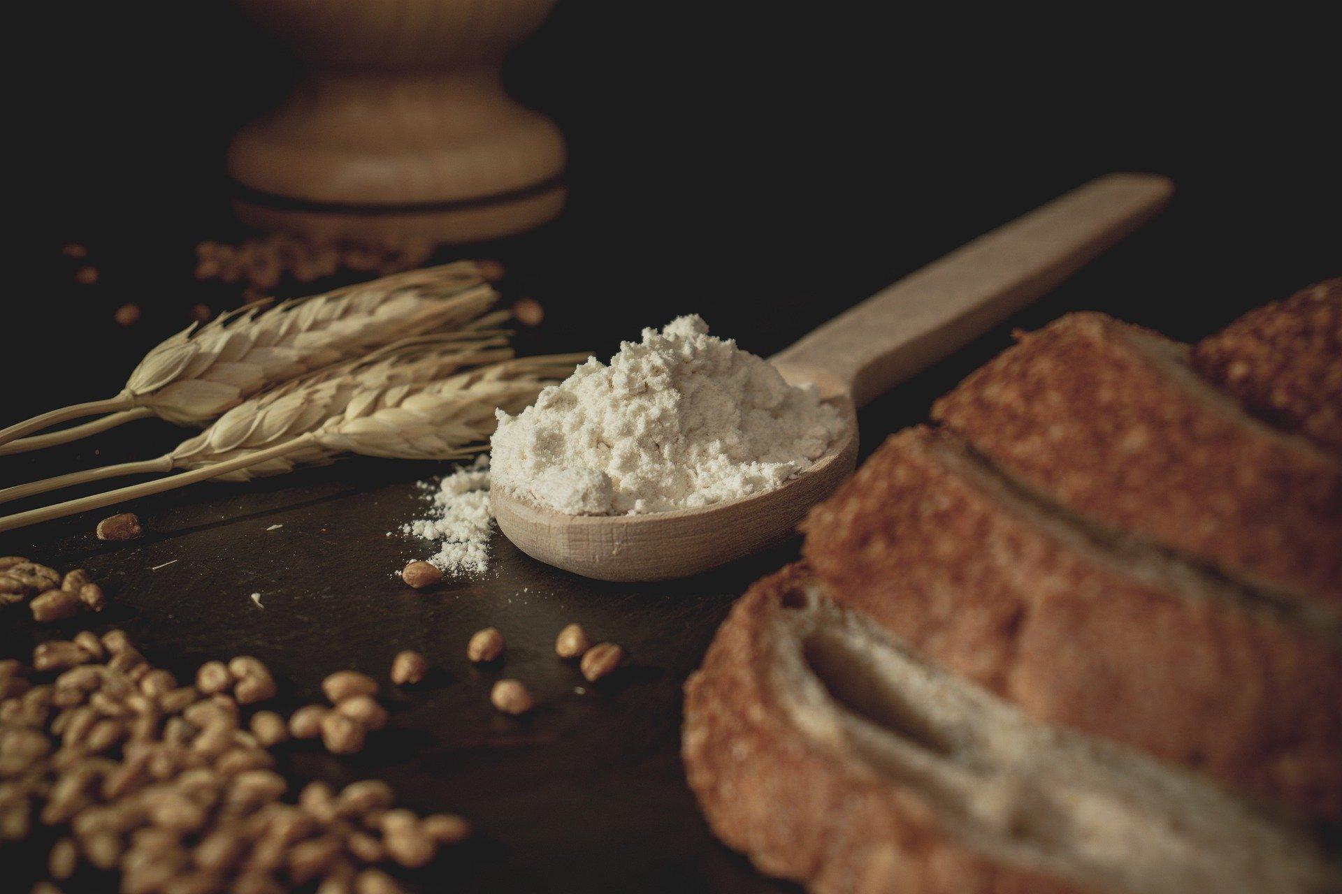 O pão nosso de cada dia ameaça gerações futuras: os efeitos de agrotóxicos e do trigo transgênico