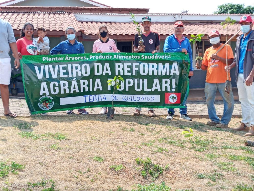 MST lança Rede de Viveiros da Reforma Agrária Popular para potencializar o plantio de árvores